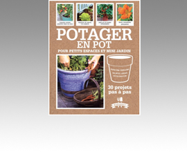 Potager en pot pour petits espaces et mini jardins