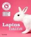 Lapin nain