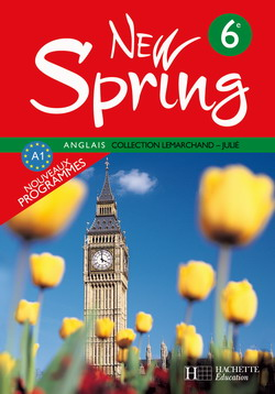 Livre spring pdf