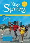 New Spring 4e LV2 Palier 1 année 1 - Anglais - Fichier tout en un - Edition 2010