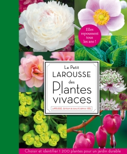 Petit Larousse  plantes vivaces/PETIT LAROUSSE OF PERENNIAL FLOWERS AND PLANTS - Collective work