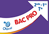 Objectif Bac Pro - Fiches