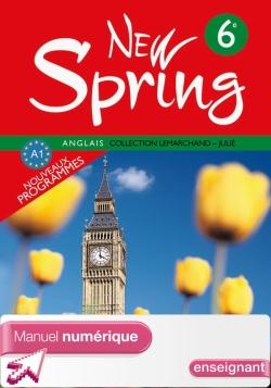 Manuel numérique enseignant New Spring 6e - Anglais - Edition 2006