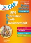 Objectif CAP Accompagnant Educatif Petite Enfance PSE